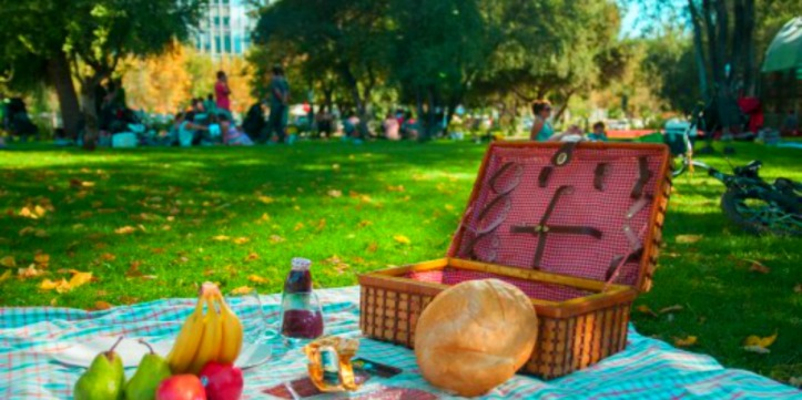 picnic-en-parque-araucano