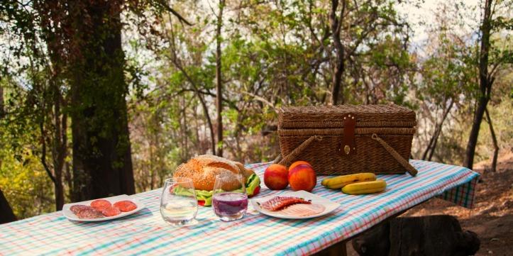 picnic-en-parque-metropolitano
