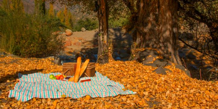 Picnic en Santuario Yerba Loca.jpg